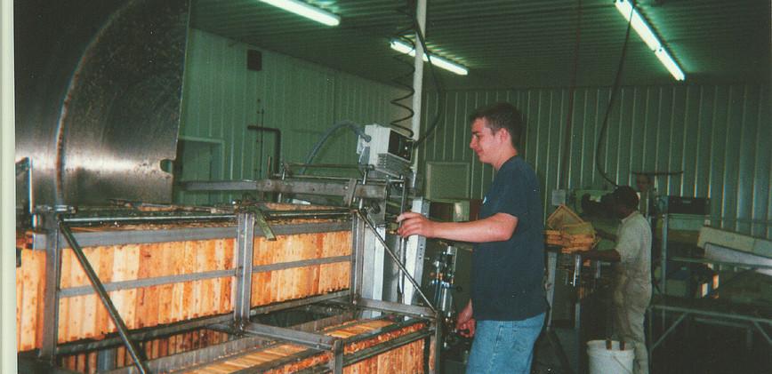 extracting (2003)