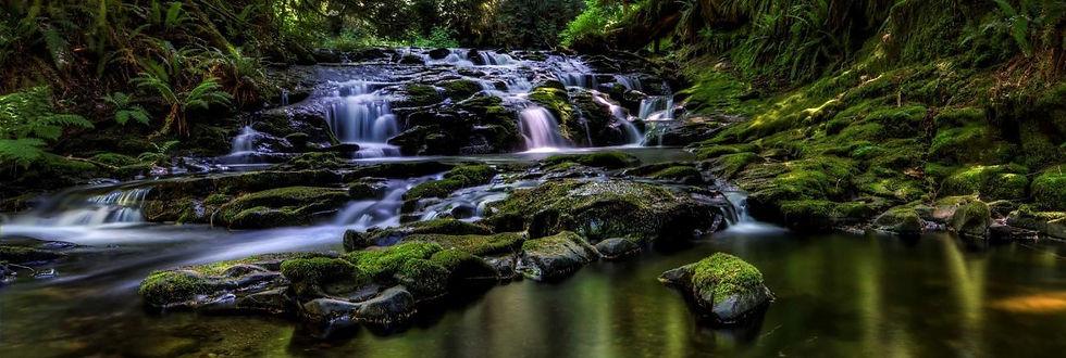cropped-cropped-stocking-creek.jpg