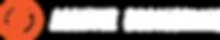 AE Logo 2.png