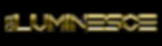 DR Logo 2 Chrome Gold.png