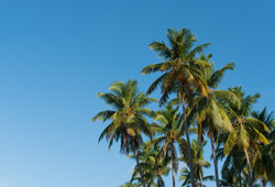 Colina Al Mar Beach Residences