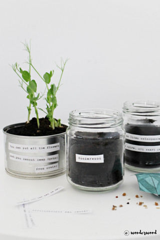 diy: 3 måter å gjenbruke glass og metall til stilige urtepotter // 3 ways to upcycle jars and cans t