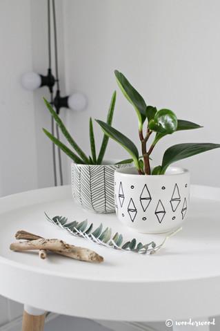diy mini-potter // diy mini planters