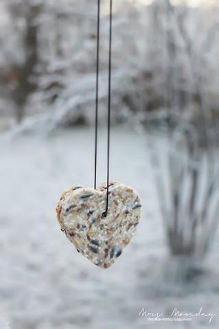 diy dekorativ fuglemat // diy decorative bird seed