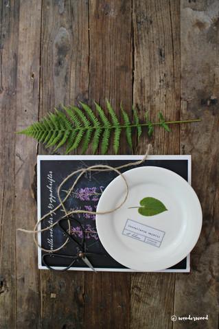 diy botaniske tallerkner // diy botanical plates
