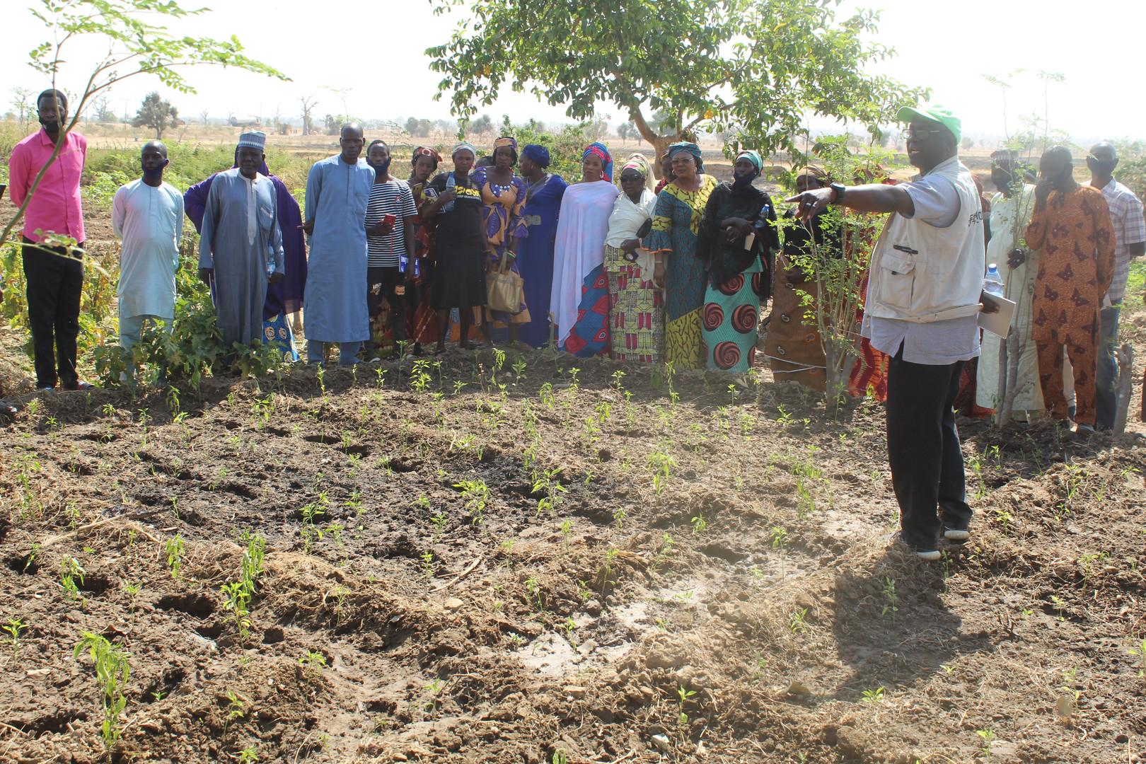 During the dry season farming training.J