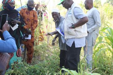 Dry season farmer sharing practical expe