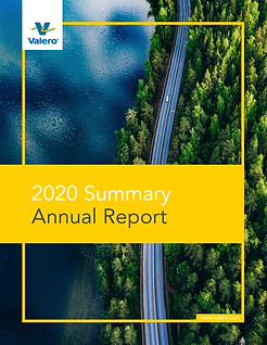 2020 Summary Annual Report.png
