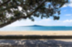Rangitoto island_edited.jpg