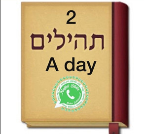 2 Kapital Tehilim A Day Groups