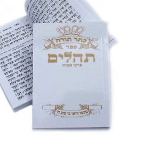 Constantly Say Tehilim Groups