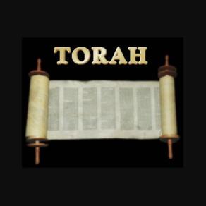 Dvar Torah & Shabbos Zmanim Groups