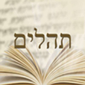 Tehilim For Klal Yisrael Group
