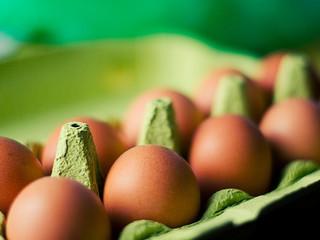 Der goldene Eier Barcode aus Kalifornien