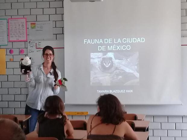 Fauna de la Ciudad de México