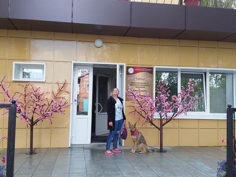 Про отели, где можно в России остановиться с собакой
