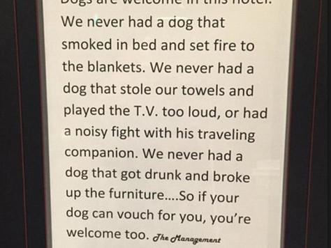 Наши отзывы про отели, где можно остановиться с собакой. И работа над ошибками.