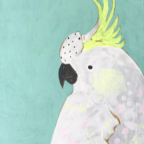 JW Birds 3.jpg