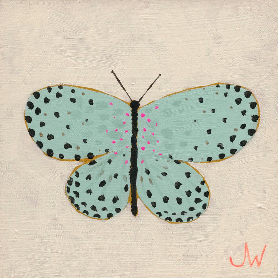 JW Butterfly 1.jpg