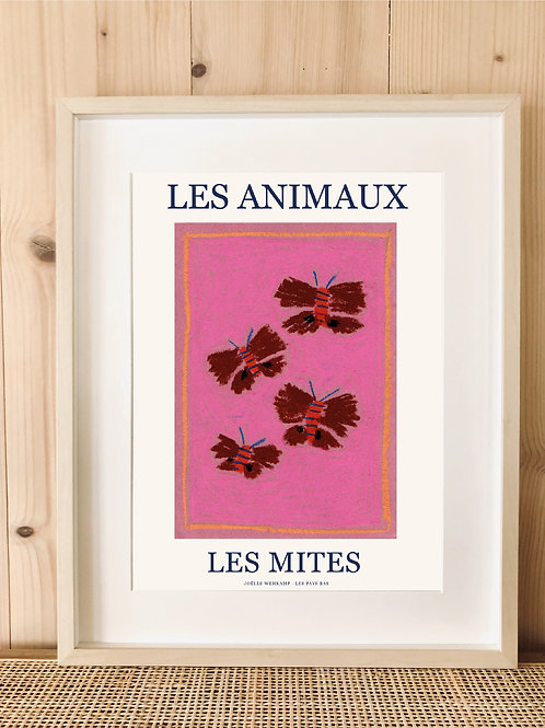 LES ANIMAUX - LES MITES