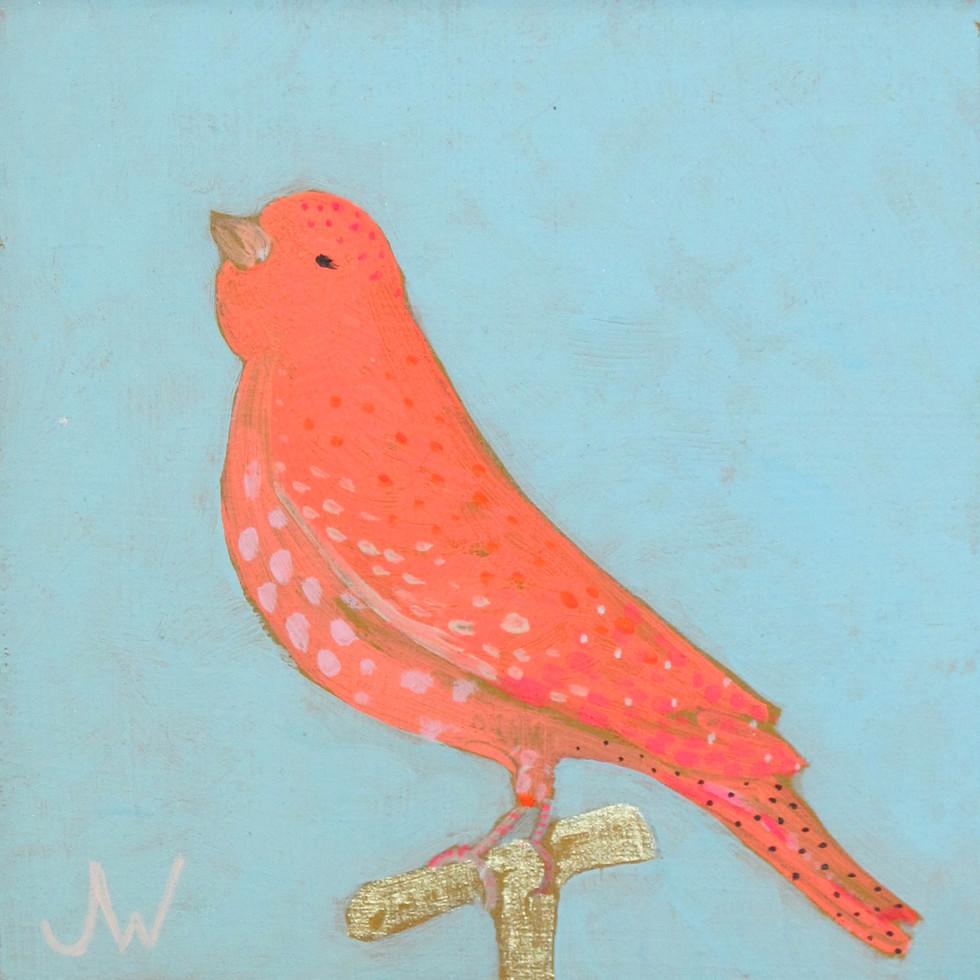 JW Birds 9.jpg