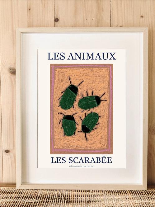 LES ANIMAUX - LES SCARABÉE