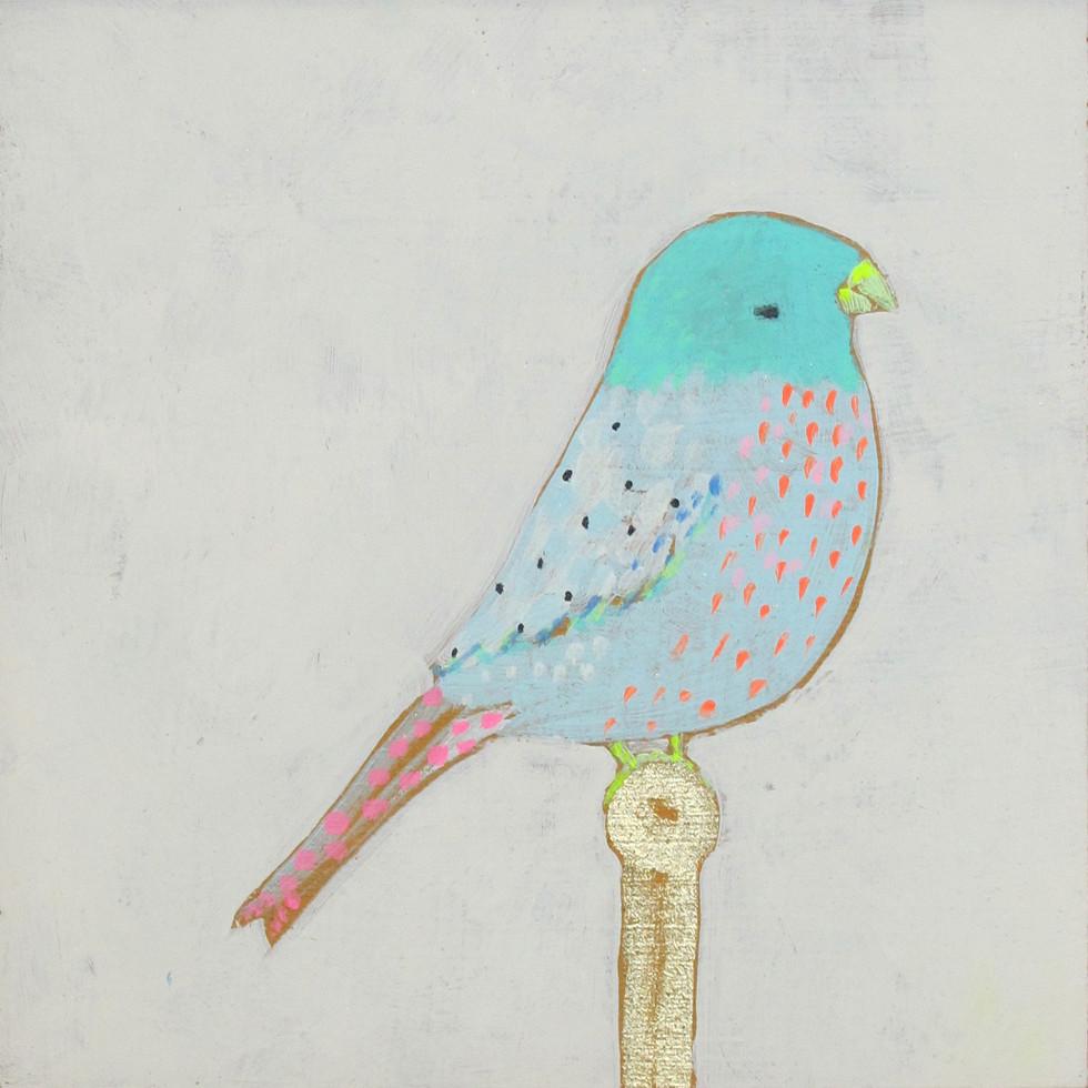 JW Birds 12.jpg