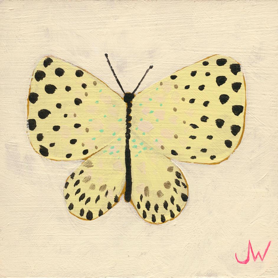 JW Butterfly 8.jpg