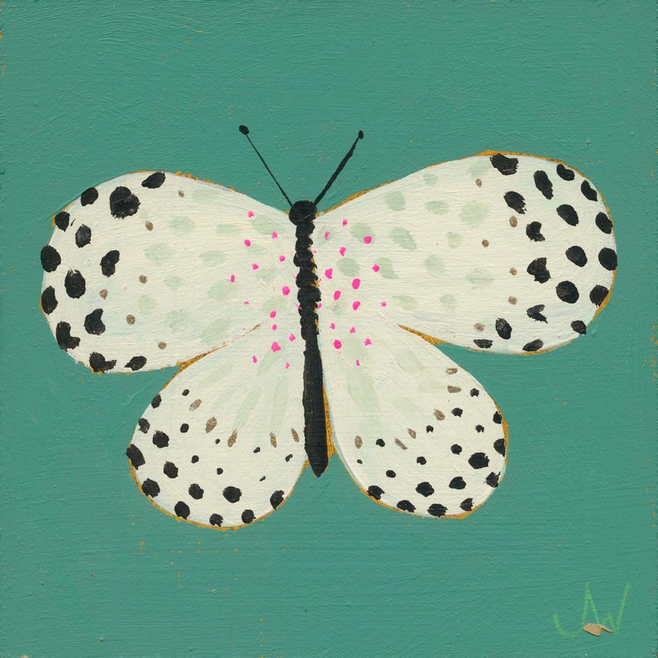 JW Butterfly 7.jpg