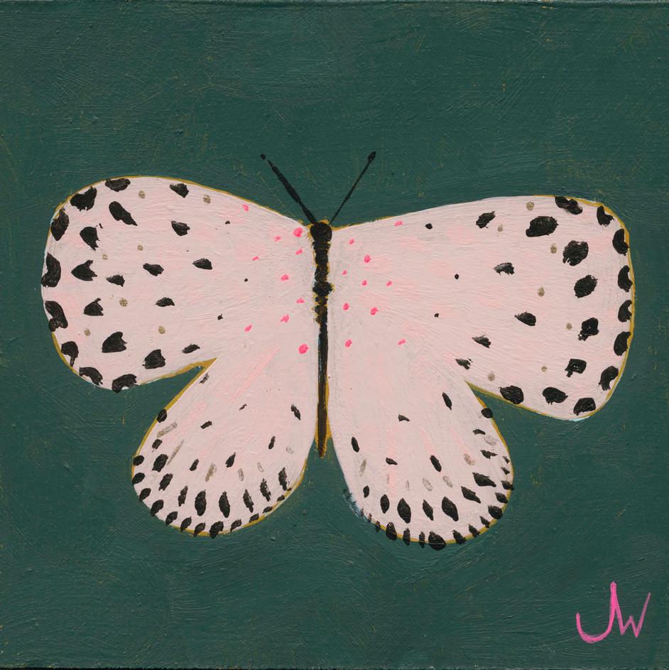 JW Butterfly 5.jpg