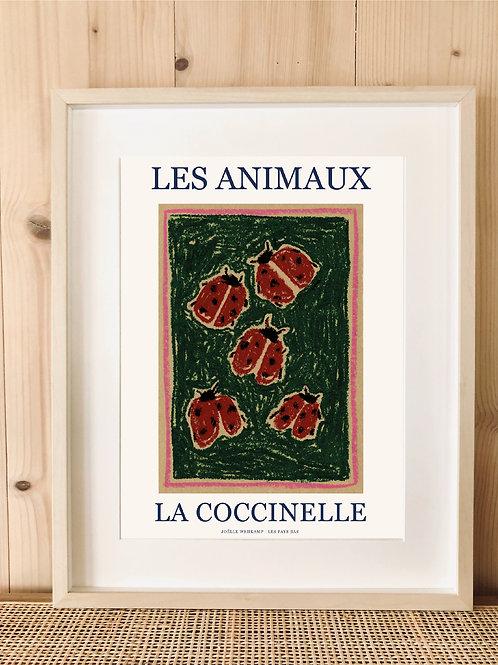 LES ANIMAUX - LA COCCINELLE