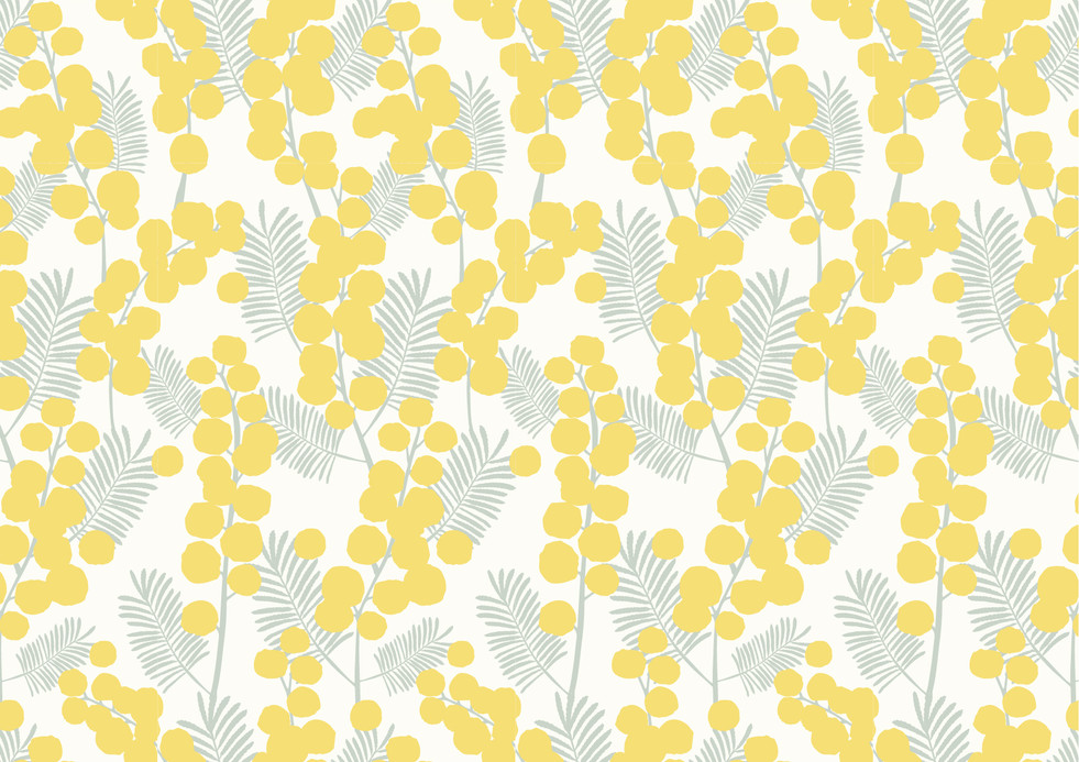 Joelle Wehkamp Mimosa.jpg