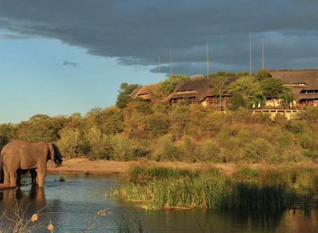"A Zimbabwe Safari is ""enticing"" says The Wall Street Journal"