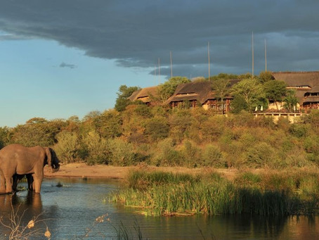 """A Zimbabwe Safari is """"enticing"""" says The Wall Street Journal"""