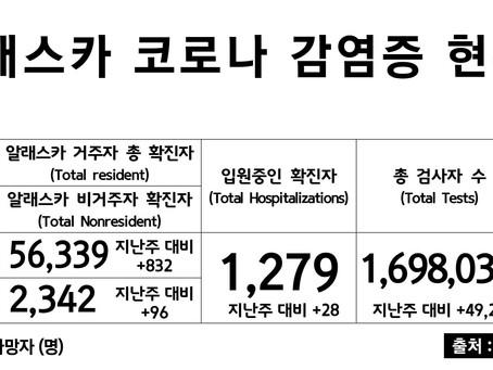 3/1일 기준, 코로나 확진자 & 사망자 수