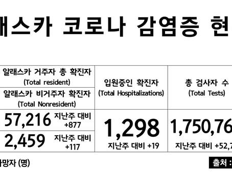 3/8일 기준, 코로나 확진자 & 사망자 수