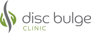 Disc Bulge logo