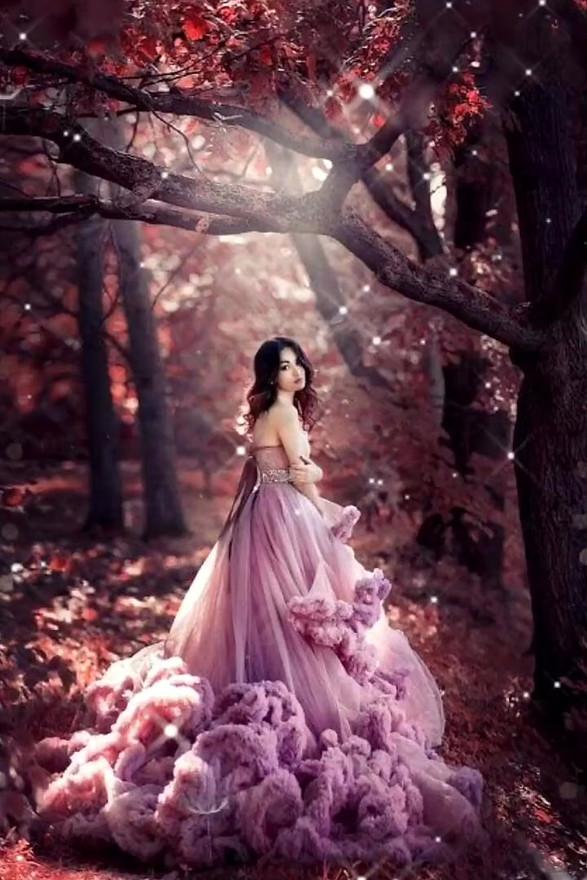 Romantic Fantasy Forest