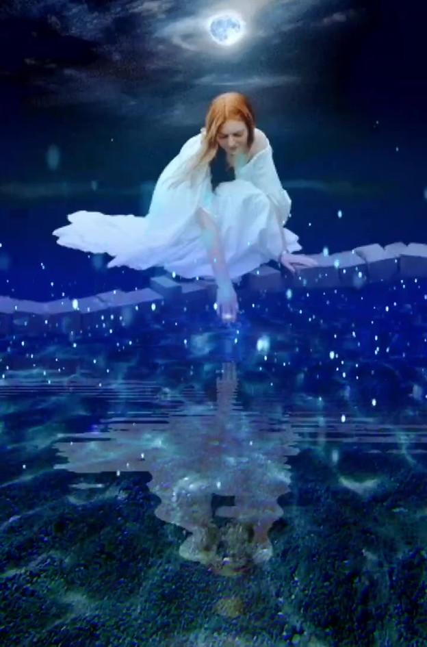 Moonlight Fairy