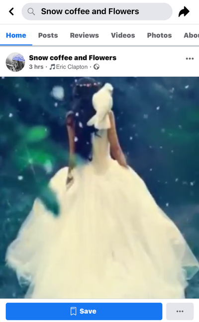 Screenshot of my video Edna claimed as hers then posted to her cloned page of another video creator she was harassing at the same time.  Note how she changes the music often.