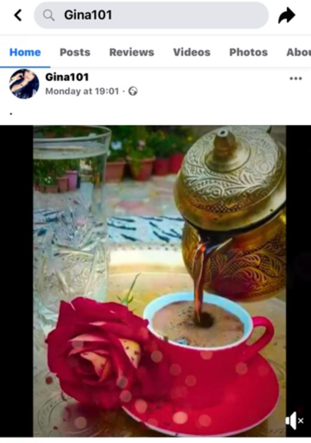 Screenshot of an older video of mine that Edna posted to the cloned page of me.