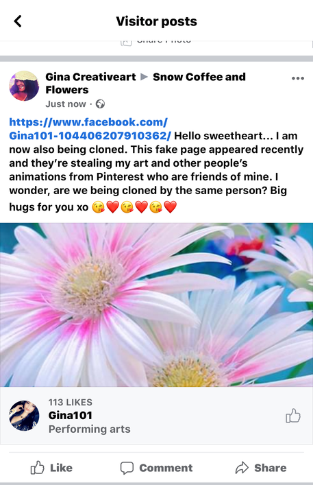 Screenshot of  a discussion I had in part with another video creator whose identity and Facebook page had also been cloned by Edna Mcqueen