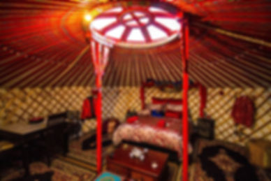 gordies pic of int. yurt.jpg