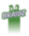 Stylin' Braidz Logo