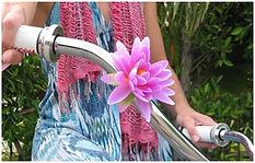 Pedal Petals Image.jpg