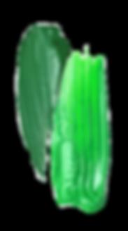 darkgreenlightgreen.png