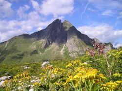 mountains-891_960_720