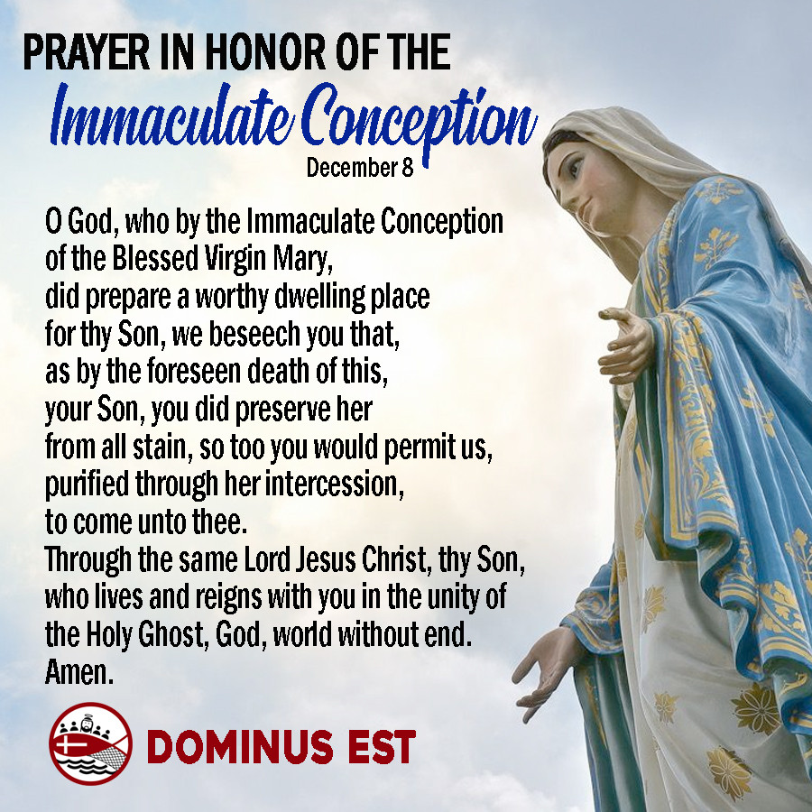 dec 8 immaculate conception.jpg