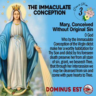 3 Immaculate Conception.jpg