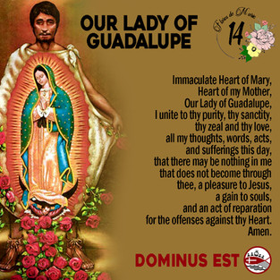 14 Our Lady of Guadalupe.jpg